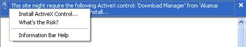 ActiveX Download Manager Information