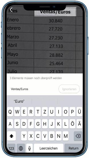 """Animierter Screenshot der Funktion """"Daten aus Bild einfügen"""" in Excel"""