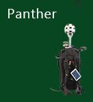 Ultracam Panther