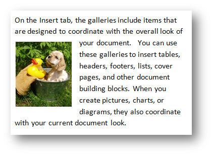 Photo inserted in text as floating figure; Puppy with rubber duck by Fotolia at Office.com/images
