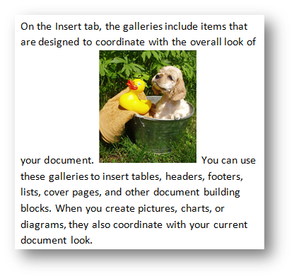 Puppy with rubber duck by Fotolia at Office.com/images