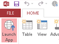 Launch the app in the browser.