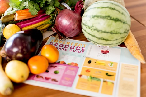 Imperfect Produce brochure surrounded with fruits and vegetables.
