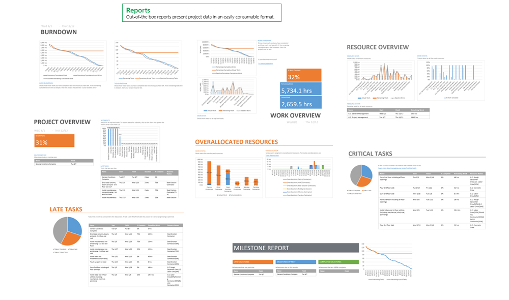 microsoft project report templates