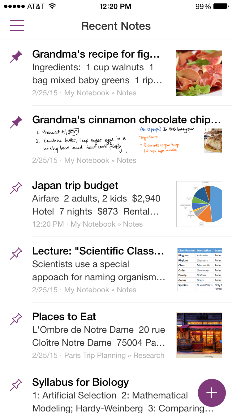 OneNote for iPhone 1