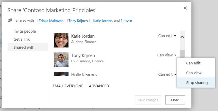 Contoso Marketing Principles