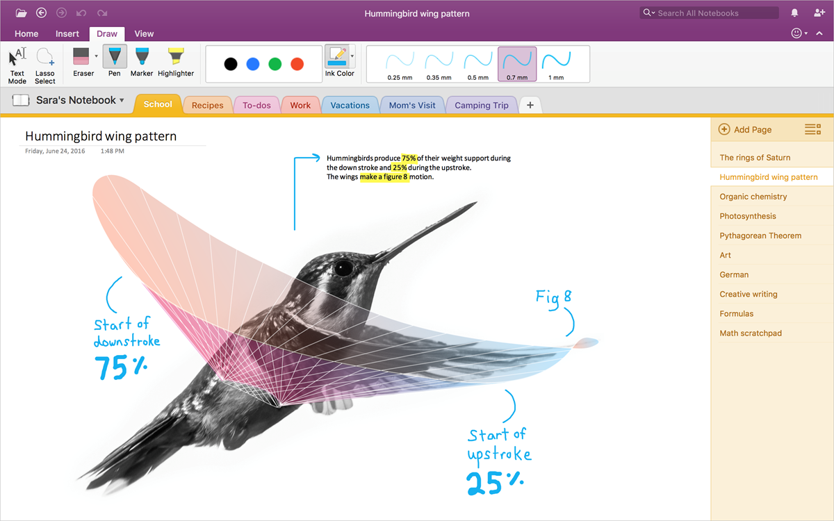 Now Mac users can make the move from Evernote to OneNote 01