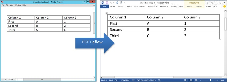 Screenshot of how a table from a PDF file looks after opening in Word
