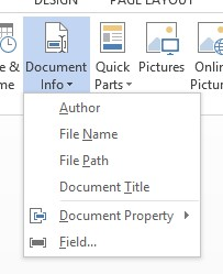 Screenshot of the document info menu on the Header/Footer tools Ribbon