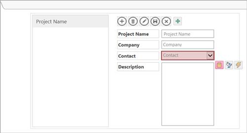 Screenshot of a List Details view in Access client designer