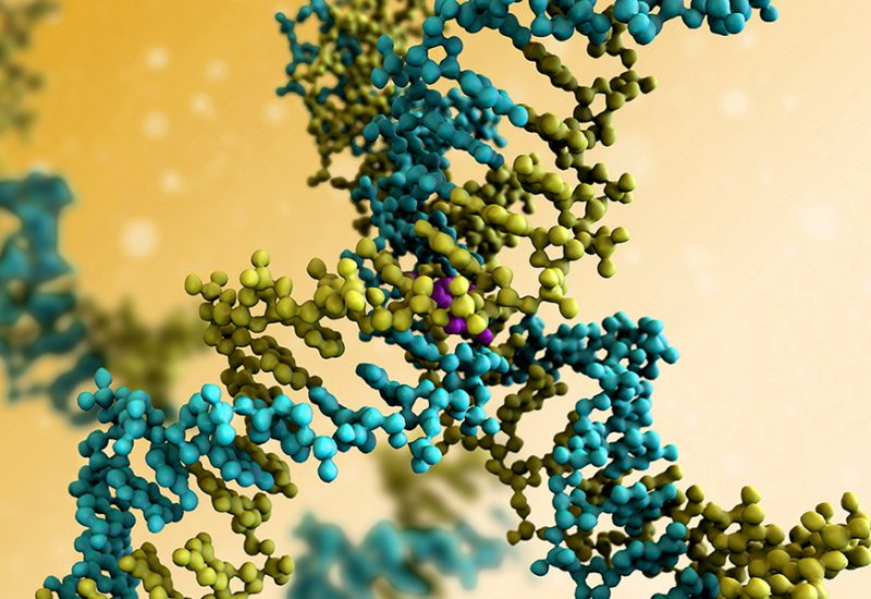 Helping proteomics scientists share peptide data