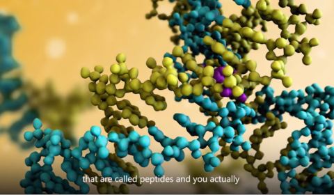Helping proteomics scientists share peptide data: Azure does the heavy lifting