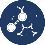 Icon: Autoimmune disease
