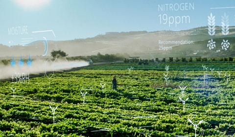 Farm field with AI overlay