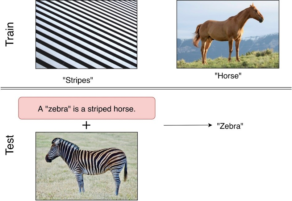 "Figure 1: Two pieces of training data—an image of a black-and-white striped pattern labeled ""stripes"" and an image of a horse labeled ""horse""—above testing data. The testing data is shown to consist of the sentence ""A 'zebra' is a striped horse,"" a piece of semantic information on the class ""zebra,"" enclosed in a pink box and an image of a zebra. The two are associated with a plus sign, and an arrow leads from the two to the inference that the image is ""zebra."""