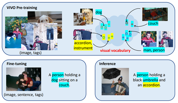 Three boxes are shown, one above and two below. Top box: VIVO Pre-training. images of a man sitting outdoors with a laptop and a dog, a dog, and a man playing an accordion and singing are labeled (image, tags). Next to this visual vocabulary is represented by two images of a dog with an arrow pointing to zeroes in a cloud. The label