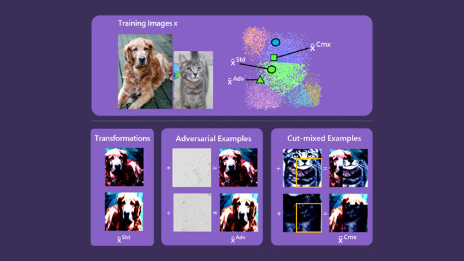 a graphic shows computer vision model using example of dog image