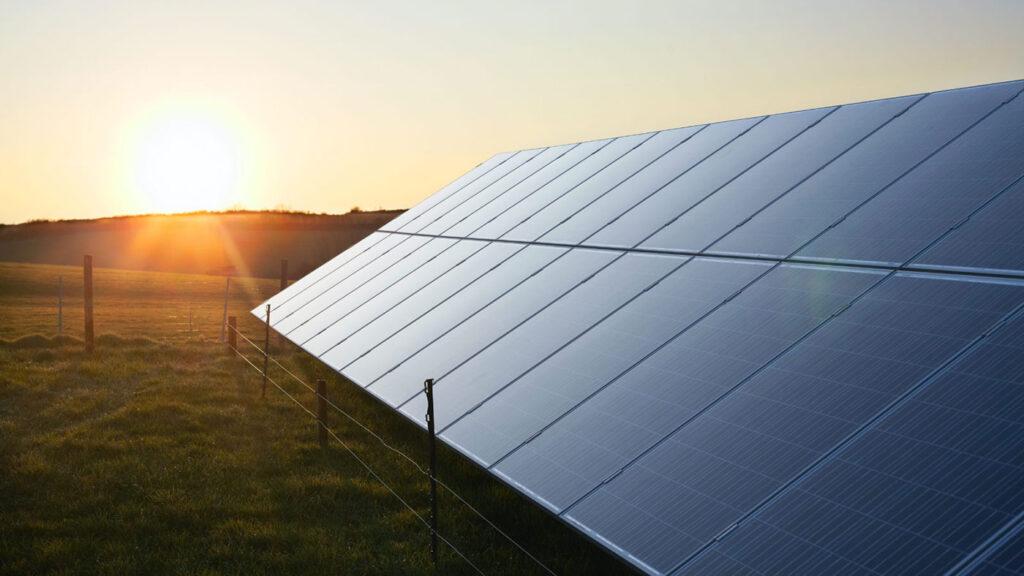 Lucas Joppa sustainability: photo of solar panels at sunrise