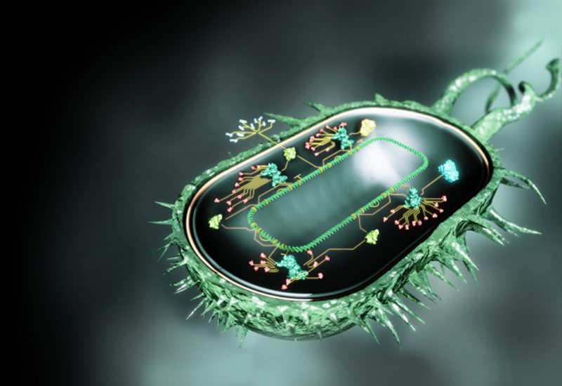 Genetic Engineering of Living Cells