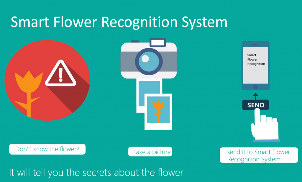 Smart Flower Recognition System