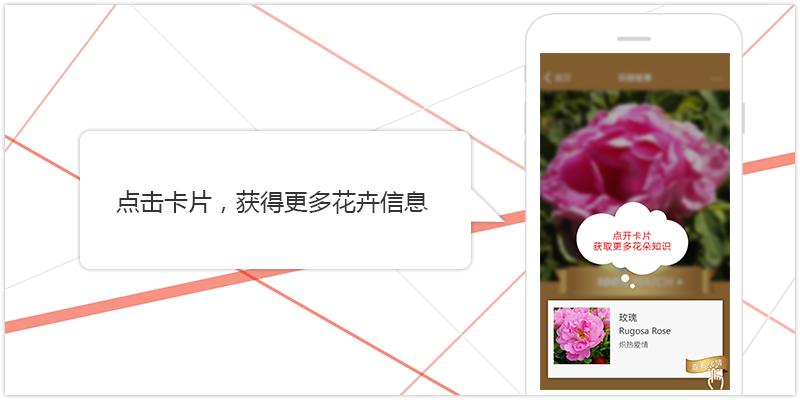 image_c_5