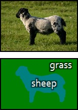 sheep-and-grass example