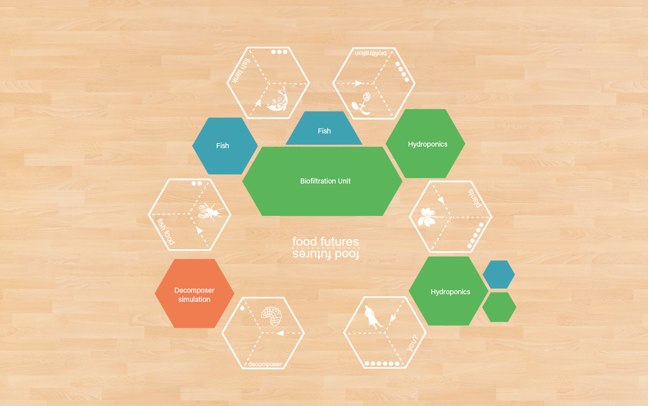 6 Stages of Ecosystem Floor Layout for Food Futures