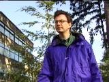 Waving Trees Scenario, Evaluation Image