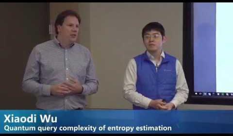 Quantum query complexity of entropy estimation