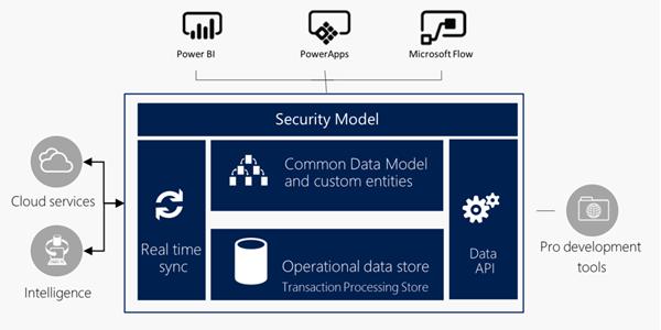 Microsoft Common Application Platform