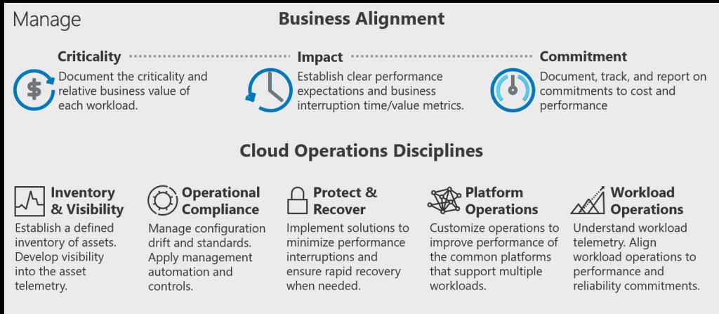 IT management model