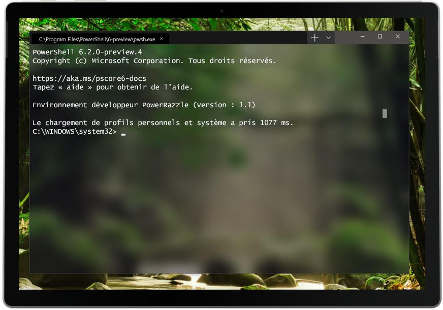 Capture d'écran du Terminal Windows utilisé sur une tablette.