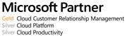 Gold Cloud Customer Relationship Management Silver Cloud Platform Silver Cloud Productivity